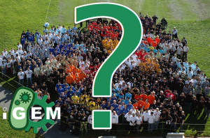 How can amateurs participate in iGEM? -
